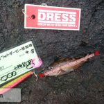dress_02052016_053022