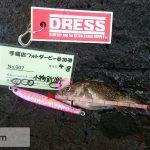 dress_02052016_054633